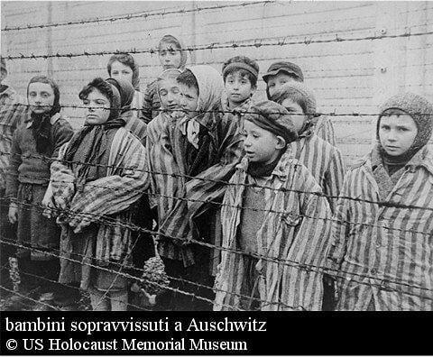 auschwitz34
