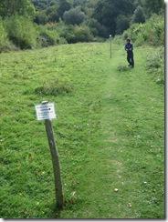 Warburg nature reserve 036