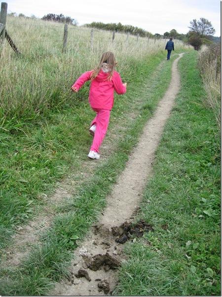 Tring-Berkhamsted walk 008