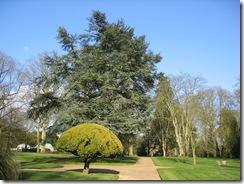 Waddesdon Manor 053